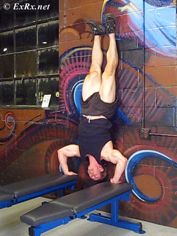Handstand Shoulder Press (between benches)