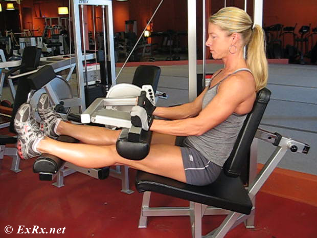 Lever Seated Leg Curl