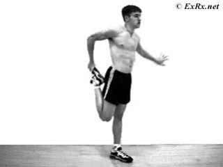 Standing Quadriceps Stretch